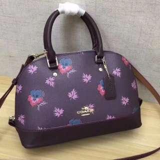 COACH 13752 蒄馳新款楓葉彩花印花女士單肩斜挎 手提包 貝殼包