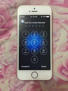 Iphone Se 64gb Factory unlock
