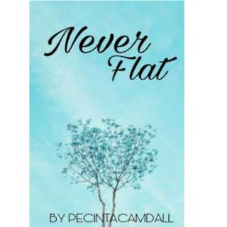 Ebook Never Flat - Pecinta Camdall
