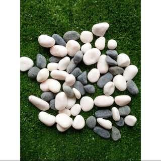 🔥Ready stock 🔥1kg garden stone