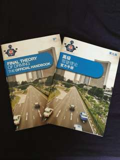 Final Theory official handbook