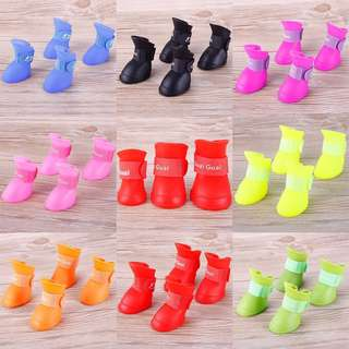 Dog jelly shoes