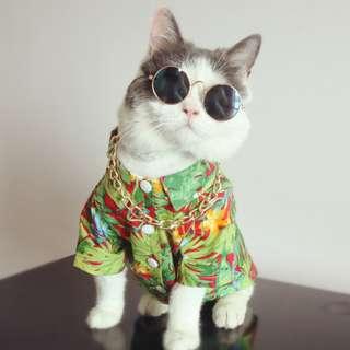 猫日屋 哥就是潮 套裝 / 貓咪 狗狗 都能穿