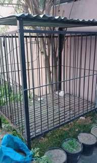 Dog Cage for Big Dogs