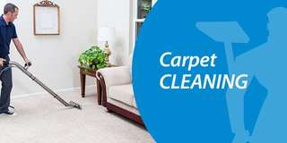 Office Wall to Wall Carpet Cleaning