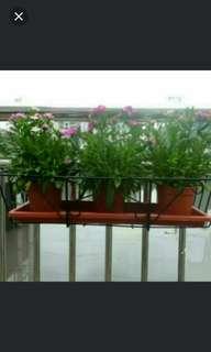 ( In stock )Hanging Flower Pot Rack🌹