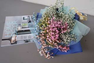 Rainbow baby's breath bouquet (Small)