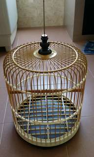 Bird cage for cabary or jumbol