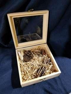 森林系玻璃木盒🌿連裝飾