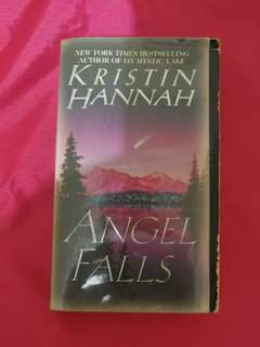 Repriced: Angel Falls by Kristin Hannah