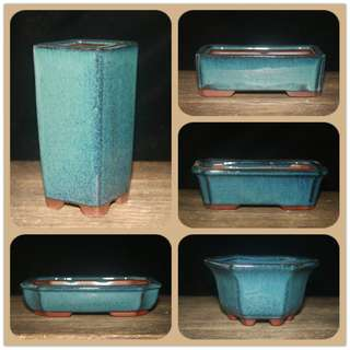 Cactus & Succulent Planter Pot -Bonsai Pot