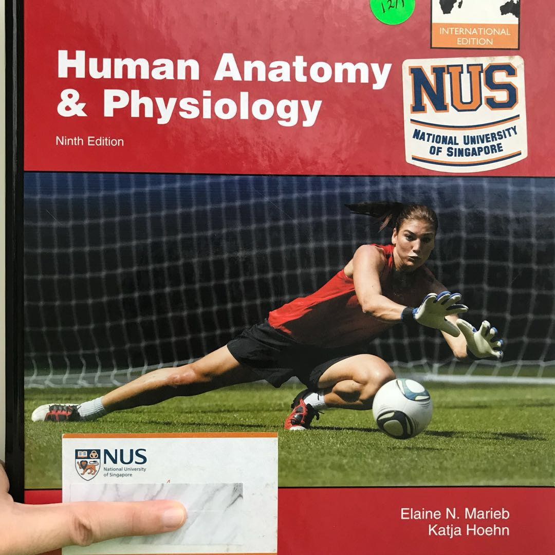 human anatomy and physiology textbook, Books & Stationery, Textbooks ...