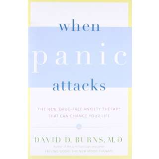 When Panic Attacks: The New, Drug-Free Anxiety Therapy That Can Change Your Life by David D. Burns - EBOOK
