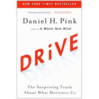 Drive: The Surprising Truth About What Motivates Us by Daniel H. Pink - EBOOK
