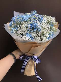 Blue and white Baby Breath Hand Bouquet