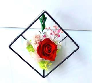Preserved Rose in Pyramid Glass Stand