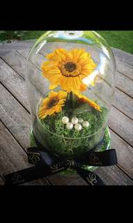 Mother's Day present / gifts / preserved / gerbera / rose