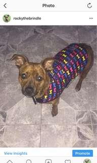 Fuzzyard Dog Coat