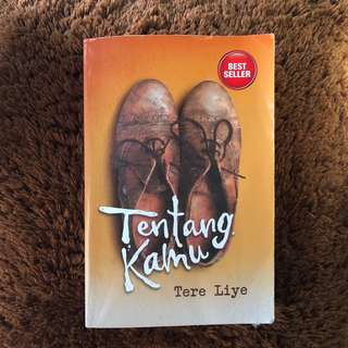 Novel Tere Liye