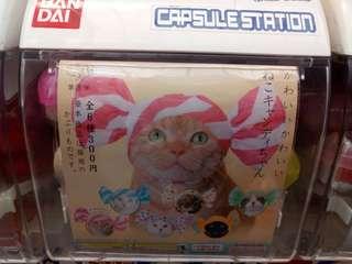 日本扭蛋 貓咪頭套
