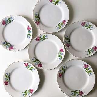 6pc Vintage Carnation Porcelain Plates