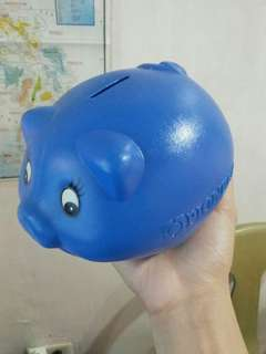 Piggy bank (coin bank)