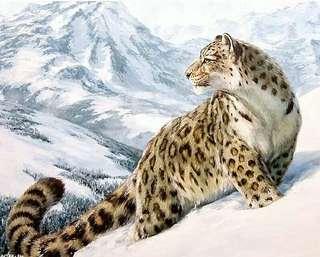 5d 50x60 full diamond cross stitch snow leopard design