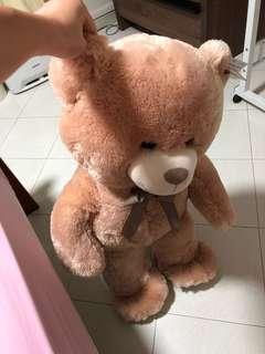 Big bear (around 80cm)