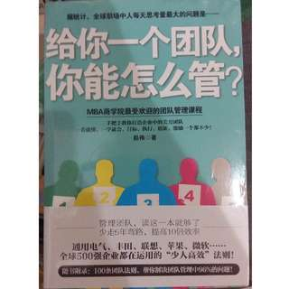 BN Sealed Leadership Guide in Mandarin #20under