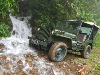 di jual jeep Willys 48