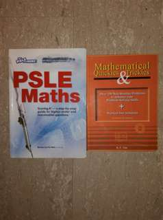 PSLE Maths Bundle Set