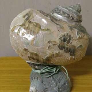 八駿圖貝殼燈