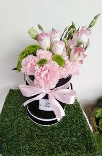 Mix flower boxes