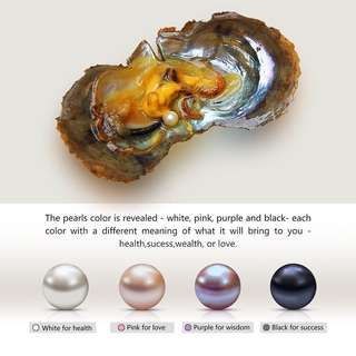 Individually Wrapped Pearl Oyster