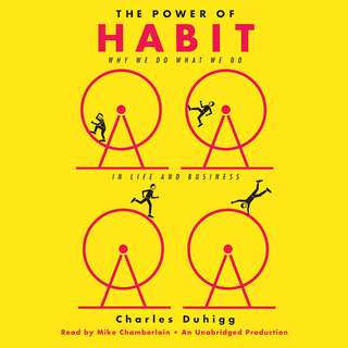 E-book The Power of Habit: Why We Do What We Do in Life and Business