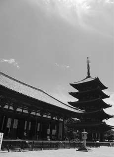 Artistic B & W photo in 11 x 14 inch frame- pic taken by owner in Nara park