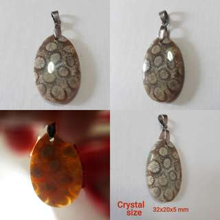Very nice Fossil Coral pendant(珊瑚玉吊坠). Translucent under light.