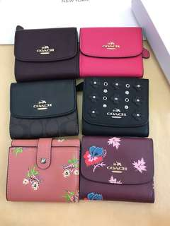 Coach Small Wallet summer version vacation ready Stock