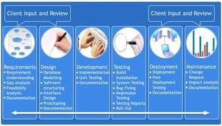 ERP, point of sale etc Software development