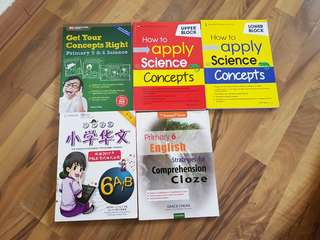 Unused Science, English and Chinese P6 Assessment Workbooks