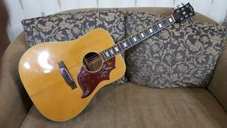 "1975 Elite Takamine ""Humming Bird"" Model HM-25"