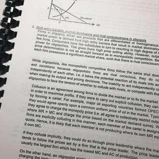 JC H2 Econs Essay Samples