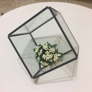 Hexagon terrarium glass vase