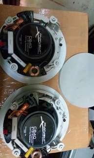 Celling speaker