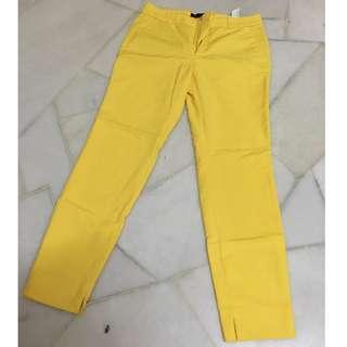 ZARA ELASTIC WAIST PANTS (YELLOW)