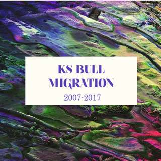 RJC KS Bull Migration Essays