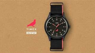 Timex x Staple Pigeon MK1