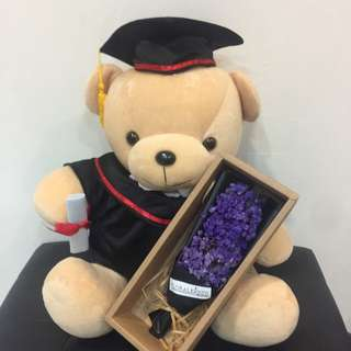 "14"" Graduation Bear with 6"" Dry Baby Breath"