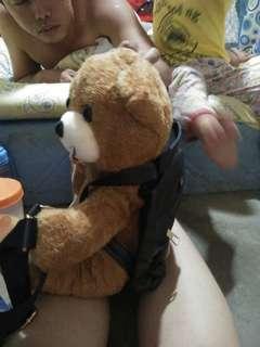 Bear bag (actual photo)