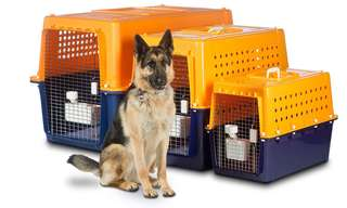 Airline Approved Dog Crate for Sale - PP70